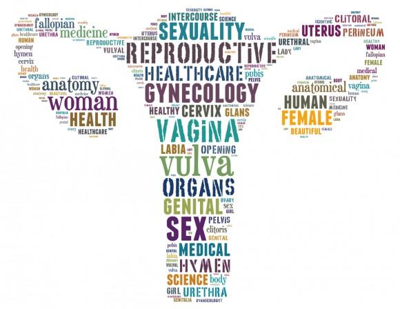 Uterus texte